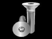 Hexagon socket countersunk head screws