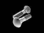 Cup head nib bolts-type 2