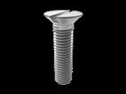 Slotted 100-deg countersunk head screws
