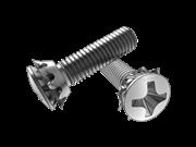 90° Cross recessed raised countersunk head screw and countersunk serrate lock washer assemblies